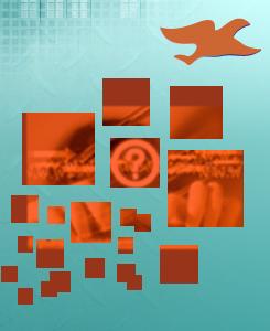 oiseau-realisations-contact-cathiedalfeur-webmaster-toulouse