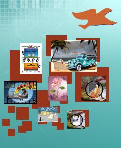 oiseau-realisations-portfolio-cathiedalfeur-webmaster-toulouse